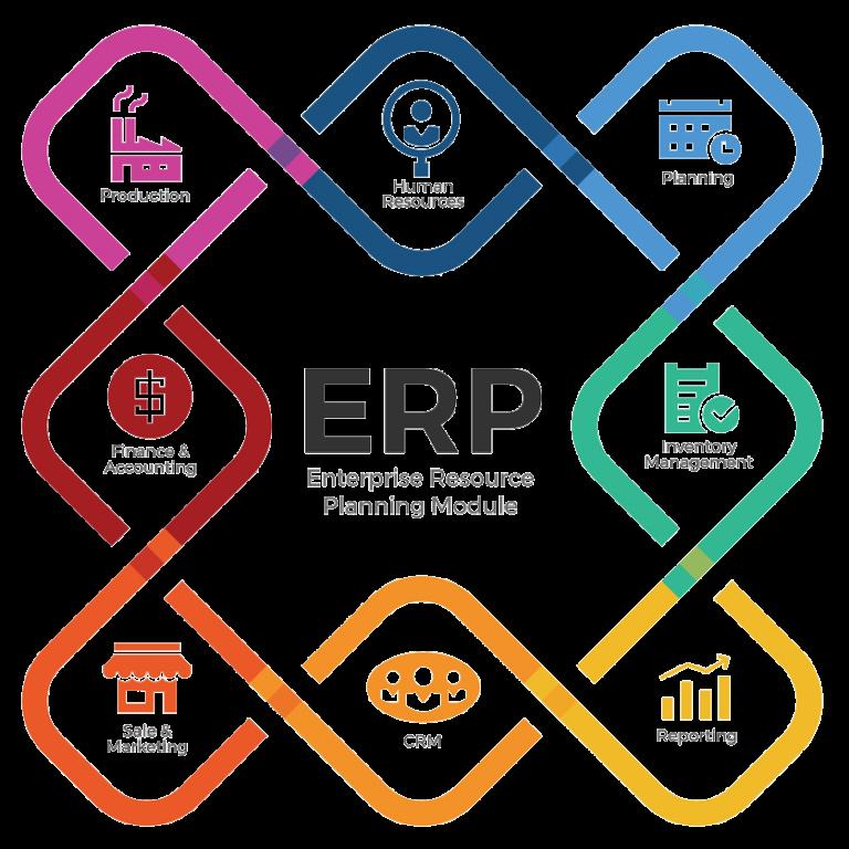 ERP Professional Project Management