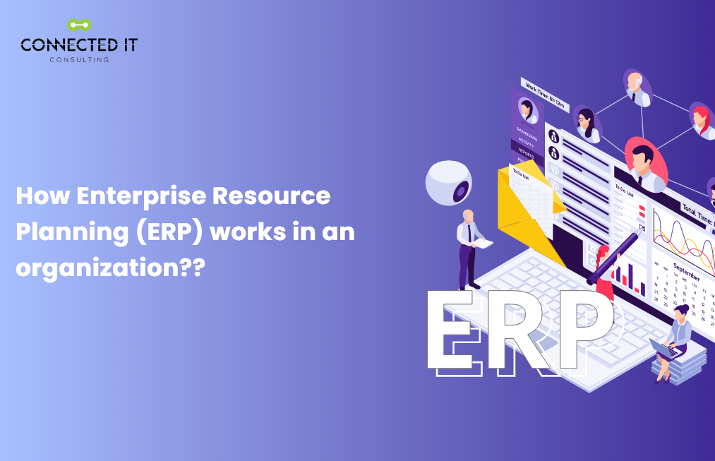 How Enterprise Resource Planning (ERP) works in an organization??