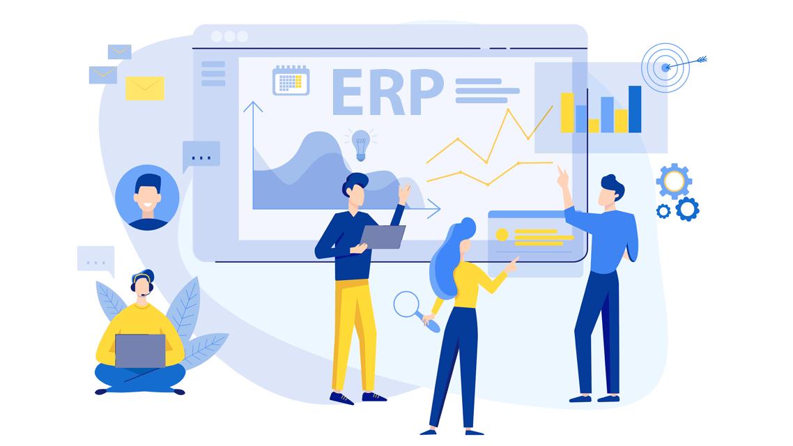 Who is an ERP Software Developer?